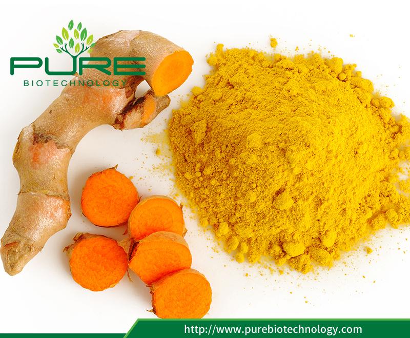 Curcumin extract powder