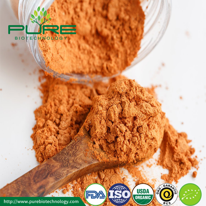 Hot Sale Pure Natural Organic Goji Berry Powder (4)