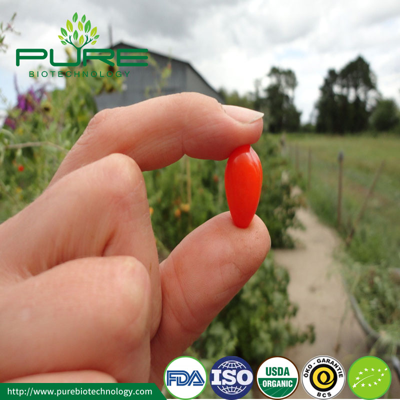 Import organic bayas de goji berry