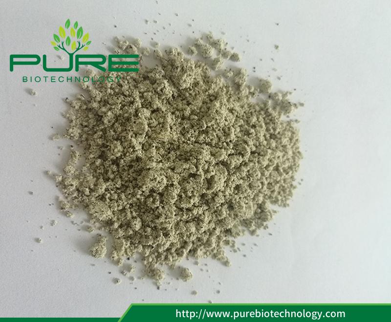 hemp seed powder