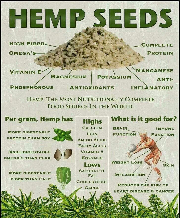 Benefits-of-Hemp-Seeds